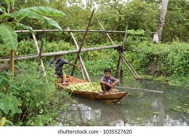 23-Oct-2017 11:00 AM - Natural Beauty of Bangladesh - Famous Floating Market of Bangladesh