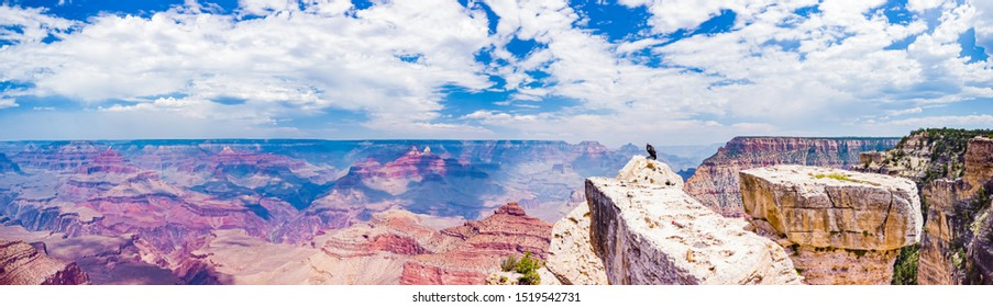 24Mpx Panorama of Grand Canyon National Park Mather Point, northwestern Arizona: Steep-sided canyon carved by Colorado River in Arizona UNESCO WHS in 1979