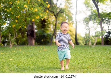 2.5 years old cute toddler boy playing and running in sunny summer park.Happy kid walking and jumping in a forest.Kids play outdoors.Pre Kindergarten in school yard on summer day.