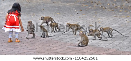 26.08.2017. little girl with red dress  playing on the street with monkeys in front of stairs of Batu Caves in Kulala Lumpur. Malasyia