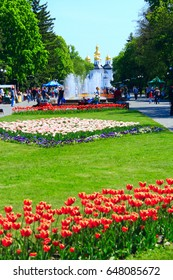 28 April 2017 in Chernihiv / Ukraine. City park in Chernihiv with beautiful tulips in the beds and a view to the church. 06 May 2017 in Chernihiv / Ukraine.