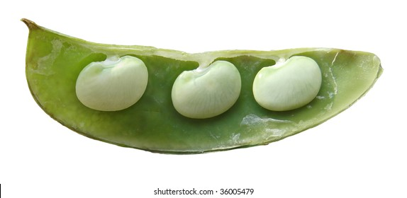 3 beans in a pod isolated on white.