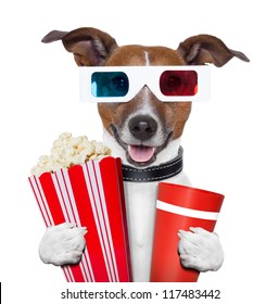 3 d glasses movie popcorn dog watching a film