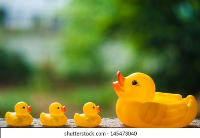 3 ducklings and a duck on bokeh background