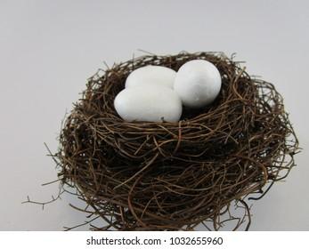3 eggs inside birds nest closeup