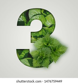 3 number three. Nature concept. Creative number with nettle leaves on a gray background. Creative typography, Chapter in the presentation, template.