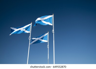 3 Scottish saltire flags on flagpoles blowing in the wind