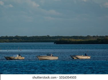 3 skiffs tied up in Bimini Bahamas.