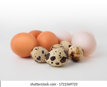 3 types of eggs concept on a white background: duck egg, chicken egg, quail egg. Placed to show different color and size characteristics, in addition raw eggs is ingredients for Cooking and Baking.