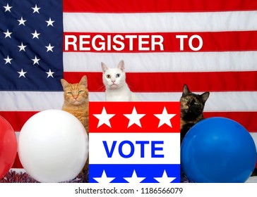 3 unique diverse cats sitting behind an election ballot box with VOTE on the front, red white blue balloons and American Flag in the background. REGISTER TO VOTE  your vote matters theme