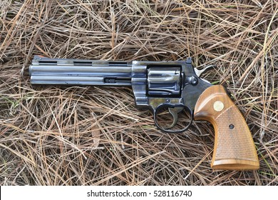 357 magnum Black Revolver with wood handle on Pine Needles Background