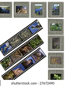 A 35mm contact sheets strip of slide film with my photos.