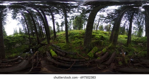 360 degrees spherical panorama of Norwegian forest in Bergen
