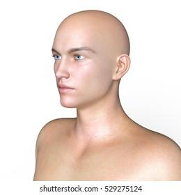 3D CG rendering of the man head