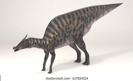 3D Computer rendering illustration of Saurolophus