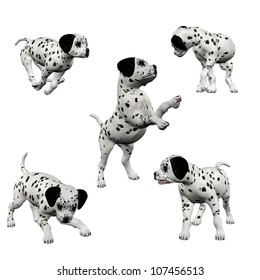 3D Dalmatian Puppies - Isolated