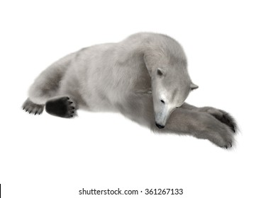 3D digital render of apolar bear resting isolated on white background