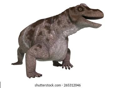 3D digital render of a dinosaur keratocephalus isolated on white background