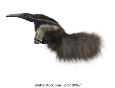 3D digital render of a giant anteater isolated on white background