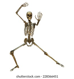 3D digital render of a human skeleton in a long tiger martial arts position isolated on white background