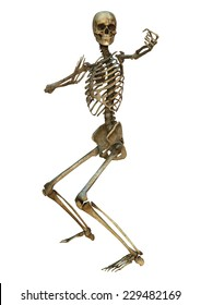 3D digital render of a human skeleton in a tate-tsuki martial arts position isolated on white background