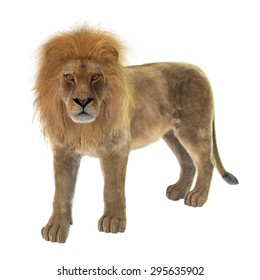 3D digital render of a male lion resting isolated on white background