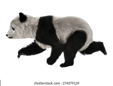3D digital render of a panda bear cub running isolated on white background
