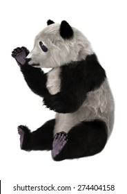 3D digital render of a panda bear cub playing isolated on white background
