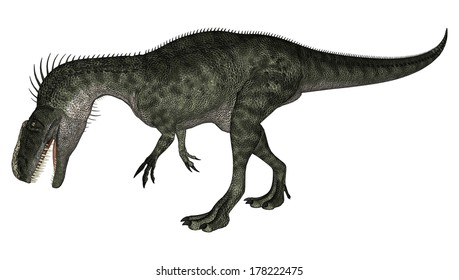 3D digital render of a walking dinosaur Monolophosaurus isolated on white background