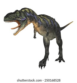 3D digital render of a walking and screaming dinosaur Aucasaurus isolated on white background