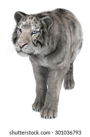 3D digital render of a white tiger isolated on white background
