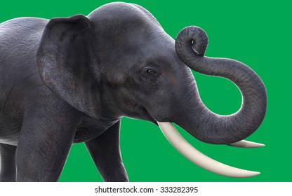3D elephants isolated on green background