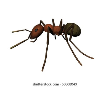 3D illustration of an ant
