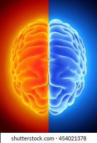 3D illustration of bright half blue and orange brain, anatomy and medical concept.