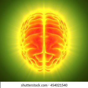 3D illustration of bright orange brain, anatomy and medical concept.