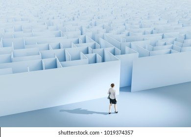 3d illustration of a business woman at the maze