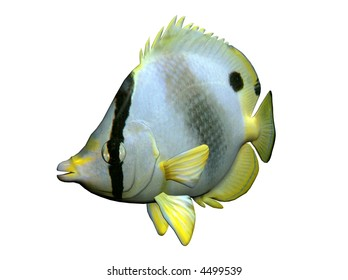 3D Illustration of a butterfly-fish
