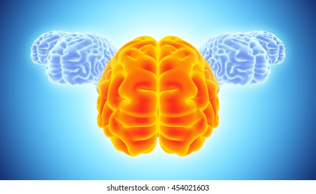 3D illustration of conceptual bright orange and blue brain, brain storm and leadership concept.