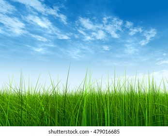 3D illustration of a conceptual green, fresh and natural grass field or lawn, blue sky background spring or summer metaphor to nature, environment, sport, soccer, golf, agriculture, eco, garden design