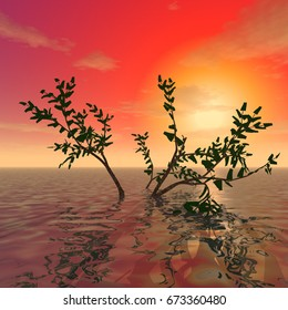 "3d illustration: ""Decoration:"" A mysterious tree on the surface of the ocean against the background of the sunset"""