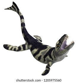 3D illustration of a dinosaur crocodile dakosaurus over white