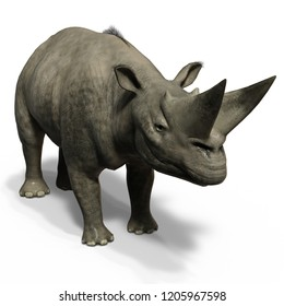 3D illustration of a dinosaur rhino Arsinoitherium over white