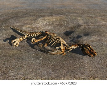 3d illustration of a dinosaur skeleton