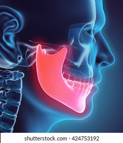 Human jaw images stock photos vectors shutterstock 3d illustration of mandible part of human skeleton ccuart Images