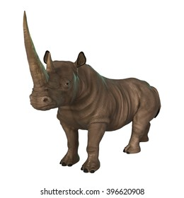 3D illustration of a rhinoceros isolated on white background