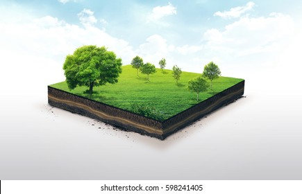 3d illustration of a soil slice, green meadow with trees isolated on white background