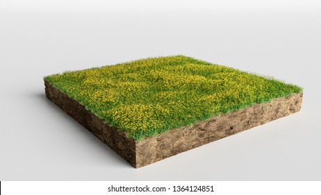 3D Illustration Square of grass field with flowers on white background