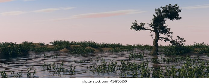 3d illustration of swamp landscape