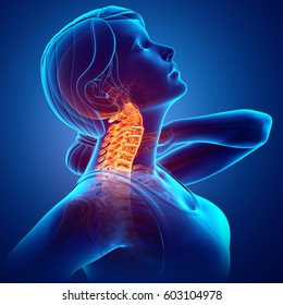 3d Illustration of Women Feeling the Neck Pain