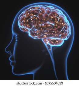 3D illustration. X-ray of the head and human brain in concept of neural connections and electrical pulses. Sparkles inside the brain. Powerful mind.